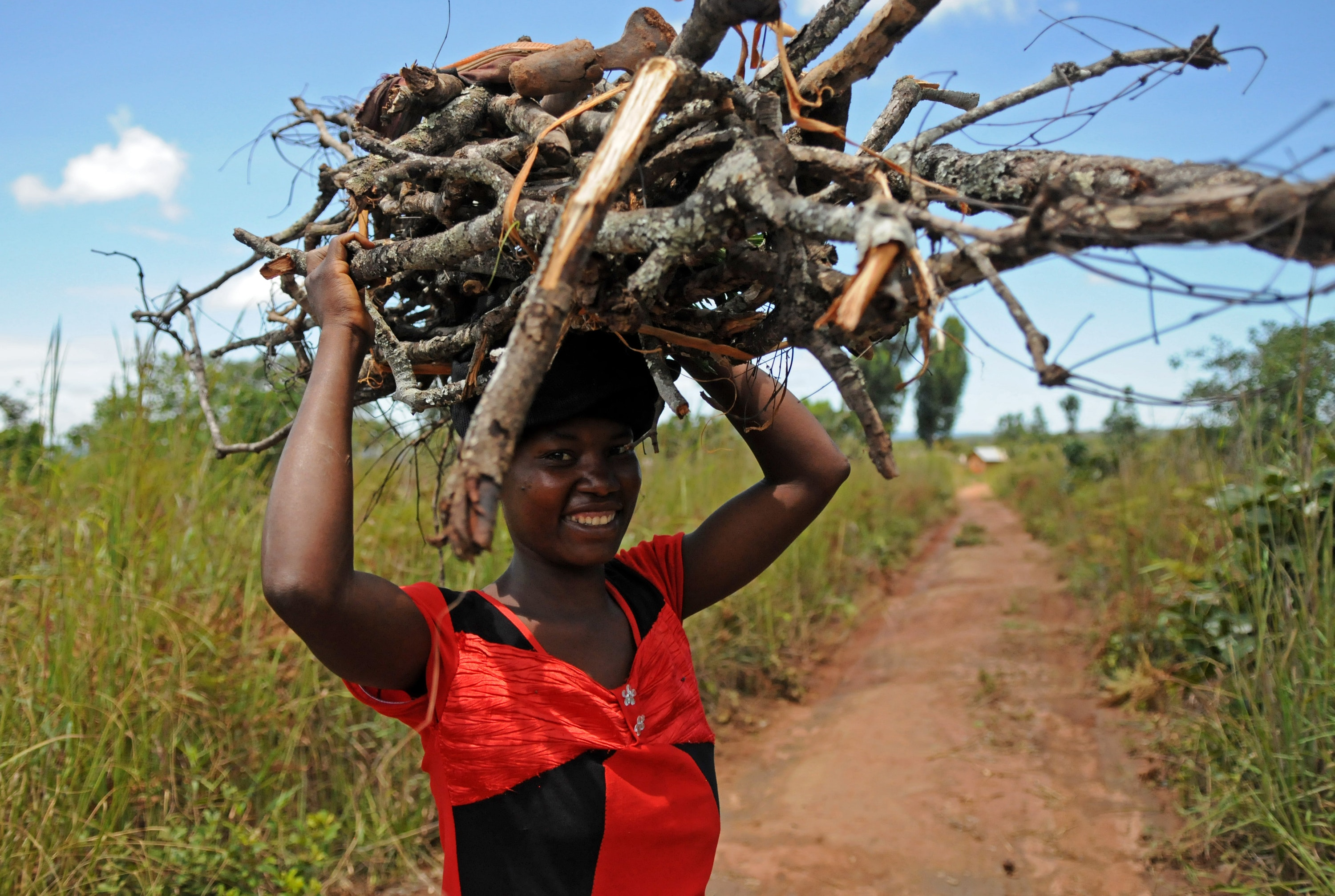 Zambia girl with firewood